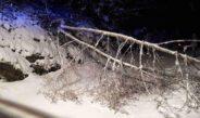 Unwettereinsatz – Schneebruch